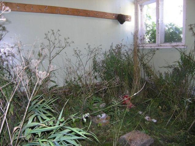 Õuega täidetud tuba 2005